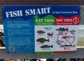 fish smart 2.1